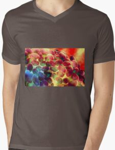~ Blissful Awakening ~ Mens V-Neck T-Shirt