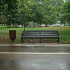 Alone in the Rain - Hyde Park London by lilivanili