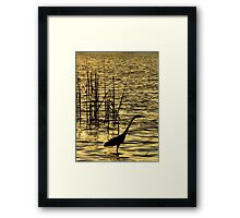 Sun Bath ~ Part Two Framed Print