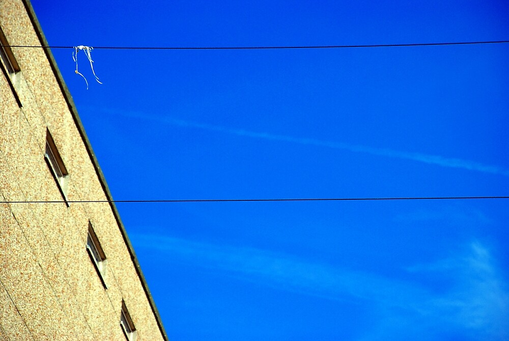 White on Wire by Simon Gentleman