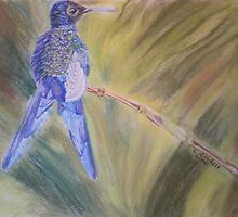 Hummingbird - pastel on paper by Claudia Goodell