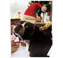 Arwen on Christmas Day  -Boxer Dogs Series- Poster