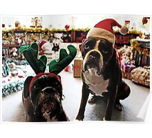 Merry Christmas!  -Boxer Dogs Series- Poster