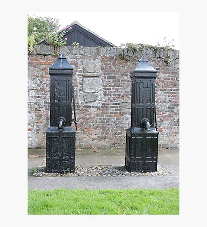 Historic Water Pumps Photographic Print