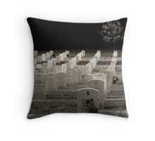 Last of the Day Throw Pillow