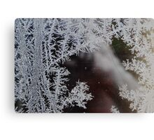 Icicle formation in Winter Canvas Print