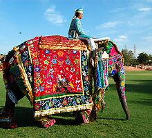 Elephant decorated with art work and raider by marijit
