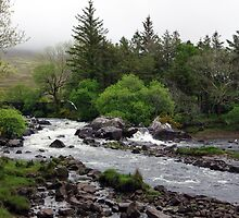 Bundorragha River Ireland by Lyle McNamara