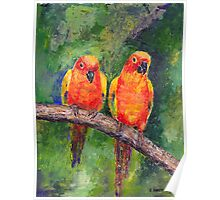 Lovebirds Poster