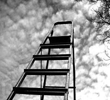 Ladder  by Josephine Pugh
