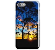 Silver Barks at Sunset iPhone Case/Skin