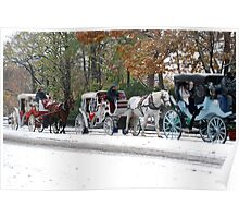 Winter In Central Park  Poster