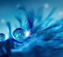 Star drops by Lyn Evans