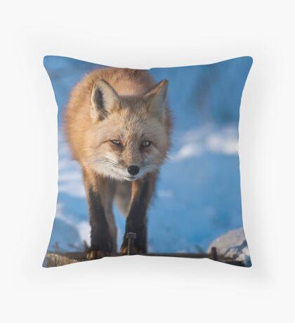 The Den Throw Pillow