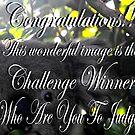 Winner banner  by Matthew Walmsley-Sims
