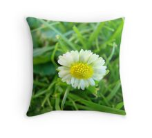 Singled Out Daisy  Throw Pillow