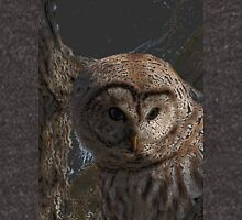 Barred Owl Hoodie Hoodie