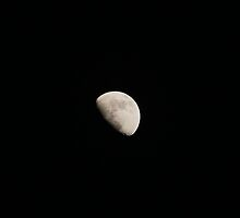 First Quarter Moon by DonnaMoore
