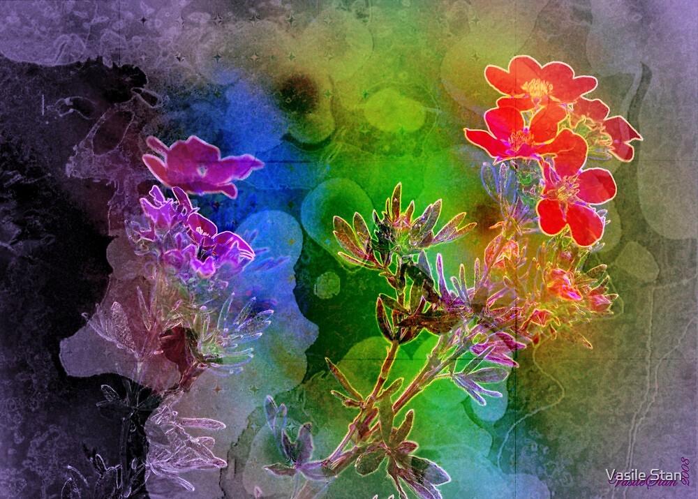 Floral ecstasy by Vasile Stan