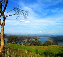 Eildon Weir from near Alexandra, Victoria by Bev Pascoe