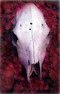 Cow Skull on Flowers - Lk Elsinore, CA by Larry Costales