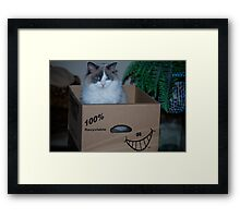 The Perfect Pet Place... Framed Print