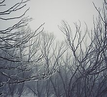 frosty by pegasusflight