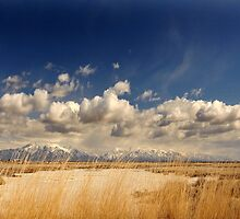 Fields West of Ogden by Ryan Houston