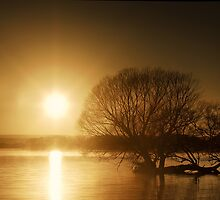 Sunbirth Over Taupo Lake  by Peter Kurdulija