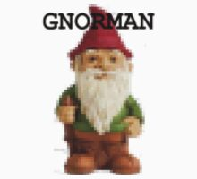 Gnorman - pixelated by stoneham