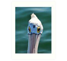 Look me in the eye Pelican Art Print