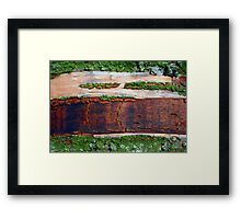 Destruction of the Rain Forest (Ariel View) Framed Print