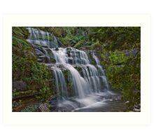 Liffey Falls, Tasmania Art Print