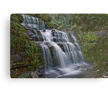 Liffey Falls, Tasmania Metal Print