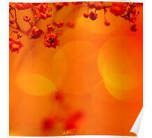 Satsuma Serenade Poster