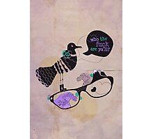 Incredulous Seagull Photographic Print