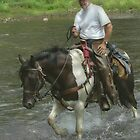 Horse and Rider by vigor