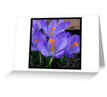 Blue Spring II Greeting Card