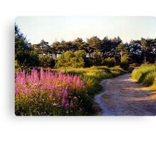 Footpath at Wells Canvas Print