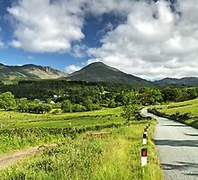 The Road To The Fells by Jamie  Green