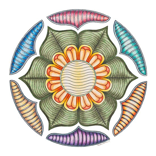 Lotus Wheel by TheMandalaLady