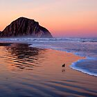 Morro Rock at sunrise by bettywiley