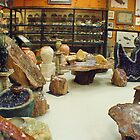 """ Geods, Fossils & Petrified Wood "" by Gail Jones"