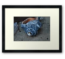 Shells on the step Framed Print
