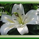Happy Birthday Greeting Card With A White Lily   by taiche