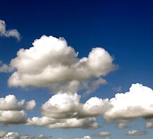 Cumulus clouds, blue sky by buttonpresser
