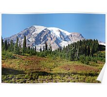 Mt. Rainier: Alpine Meadow Poster
