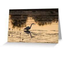 Sunset Ponds Greeting Card