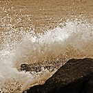 ... on the ROCKS with a SPLASH! by Terri~Lynn Bealle