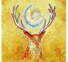 Spirit Stag Photographic Print